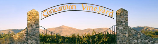 Concannon Wineyard, California