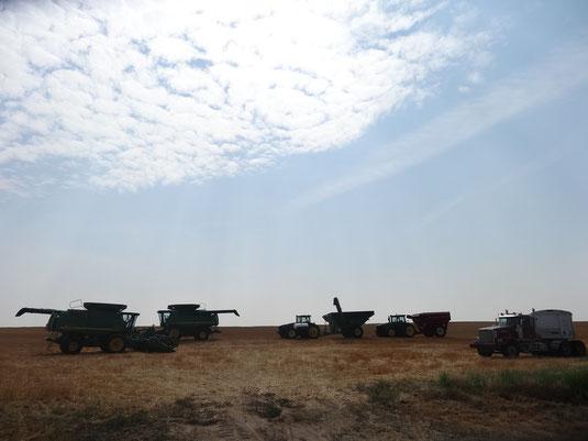L'armada de machines pour affronter les terres hostiles de la monoculture
