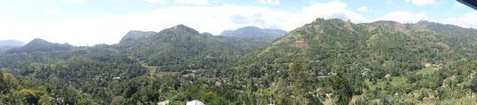 Vue sur les montagnes et les champs de thé