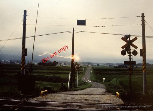 Provável raio bola visto em Nagano, Japão, em 1988. Copyright Warren Faidley.