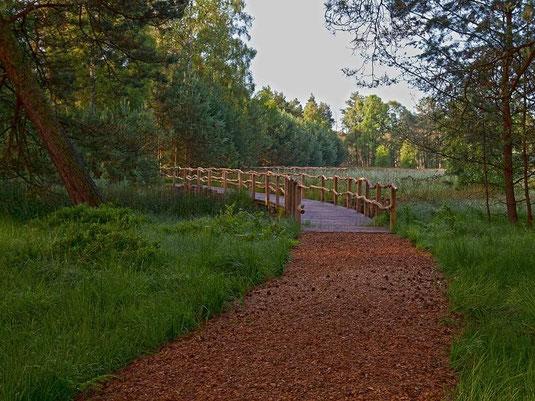 Das NABU-Wanderwegesystem im Großen und Weißen Moor lädt zu großen und kleinen Spaziergängen ein.
