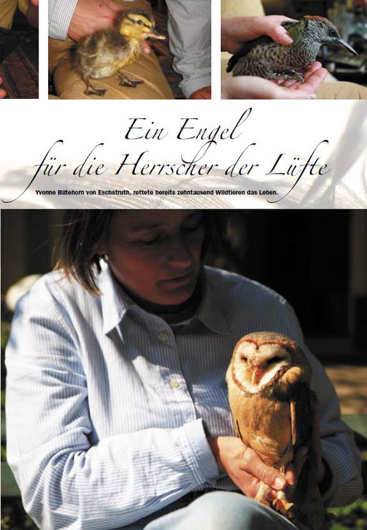 Bericht Entree 2008 - Ein Engel für die Herrscher der Lüfte