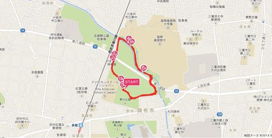 野川公園ランニングコース