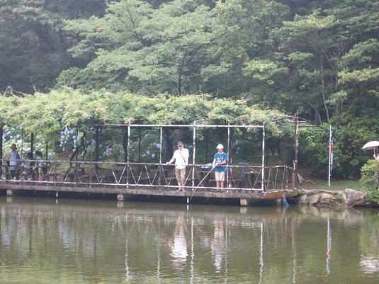 六甲山カンツリーハウスの池・釣り堀で鯉と金魚釣りの写真1