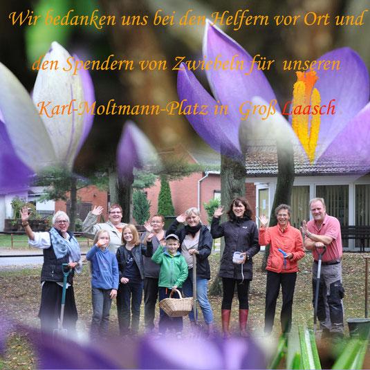 Verein Gross Laasch Flexibel e.V. - ca. 3000 Blumenzwiebeln wurden gesteckt