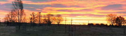 Sonnenaufgang -  Foto Andrea Weinke, Gross Laasch Flexibel e.V.