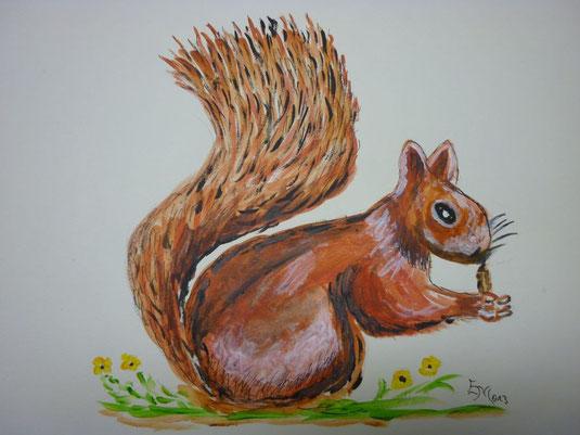 Eichhörnchen Jan. 2013