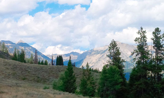 The Gros Ventre Wilderness
