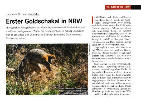 Quelle: Rheinisch Westfälischer Jäger 12-2020