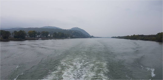Standuppaddelnin Wien, Sup in Wien, Stand up Paddeln auf der Donau, die schönsten Sup Touren Österreichs, Stand up Paddel touren Österreich