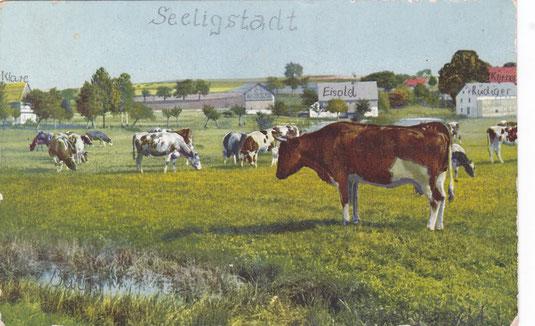Bild: Teichler Seeligstadt Sachsen Benno-Teich