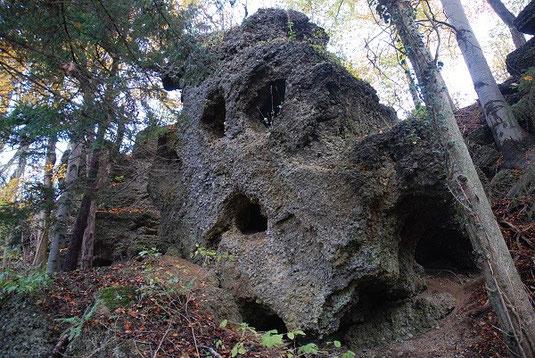Abb. 1: Aufgelassener Steinbruch bei Untersteinbühl