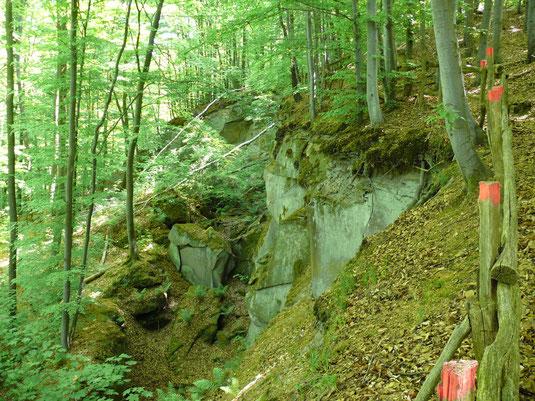 Foto 2: Rutschung Gailnauer Berg, Obergailnau, Frankenhöhe; Foto: D. Jäger