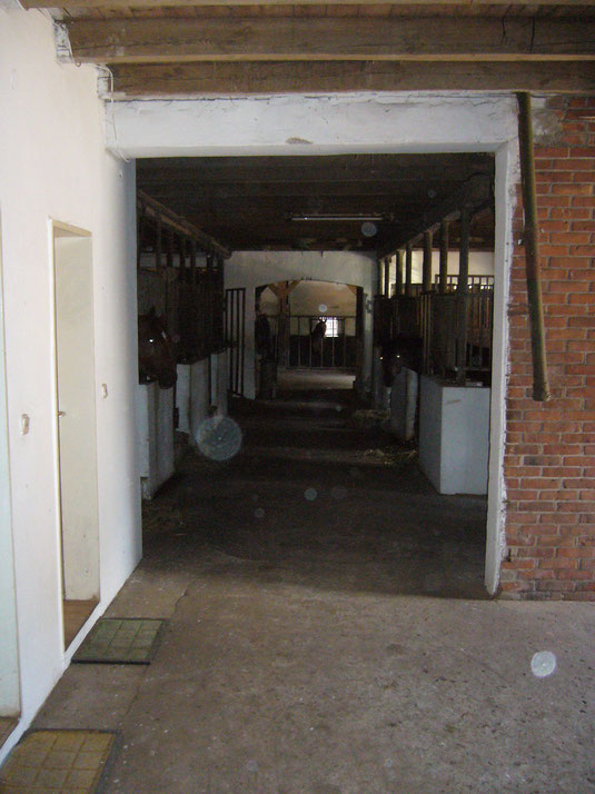Stall 3