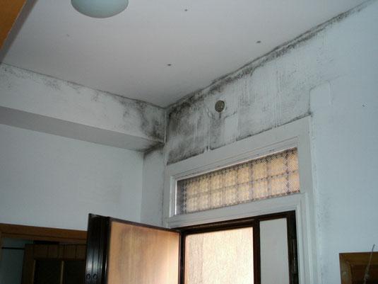 MURI UMIDI: Condensa e Muffa - umidità nei muri