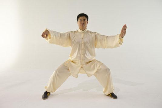 le Grand Maître WANG Haijun