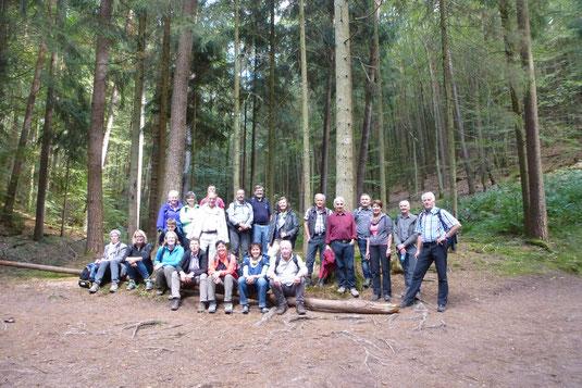 Begeisterte Wanderer auf der Dahner-Felsentour