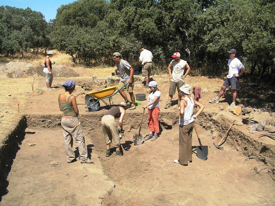 Archaeological excavation 2010