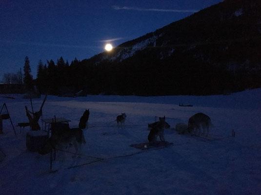 Unser Camp, vom Vollmond beleuchtet. (Foto A. Eberle)