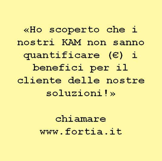 «Ho scoperto che i nostri KAM non sanno quantificare (€) i benefici per il cliente delle nostre soluzioni!»  chiamare www.fortia.it