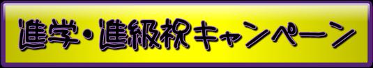 空手 キックボクシング 埼玉県 蓮田 東大宮 キャンペーン