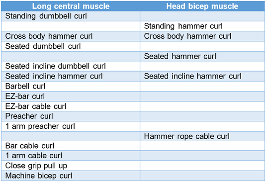 overview biceps exercises dumbbell curl pull up hammer curl incline