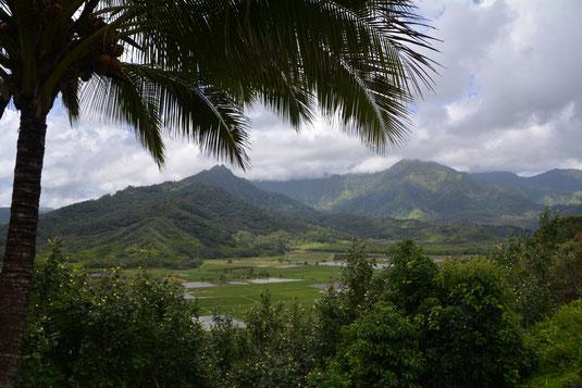 Blick auf das Hanalei Valley