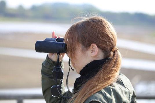 Vögel beobachten und zählen bei der Stunde der Garten/Wintervögel  Foto: Peter Bria
