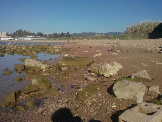 Litorale roccioso davanti al castello di Santa Severa. Spiaggia sabbiosa a sinistra.