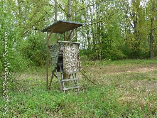 Unsere Forderung: Die Jagd hat während der Brutzeit in einem Naturschutzgebiet zu ruhen! (Foto: Ute Wild)
