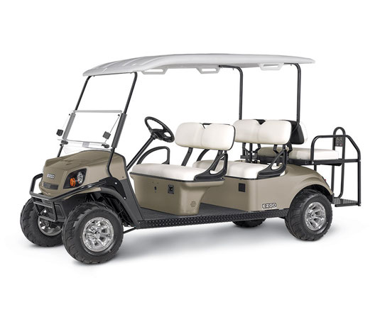 EXPRESS S6 BY E-Z-GO ezgo