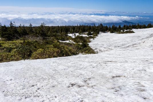残雪と雲海