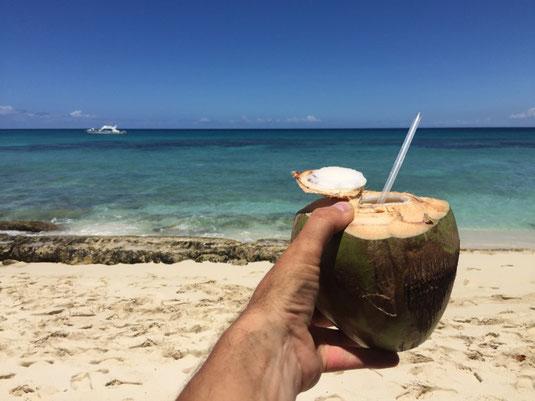 Isla Catalina, La Romana, RD, DR, Dom Rep, Dominikanische Republik, Schnorcheln, Korallen, Urlaub, Entspannen, Kokosnuss