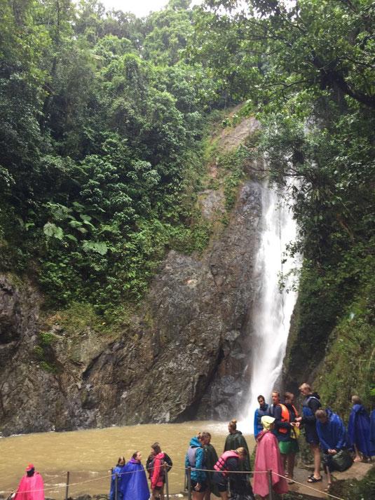 Wasserfall Navua, Fidschi