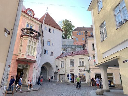 Estland, Tallinn, Reval, Altstadt, Denkmal, Gassen