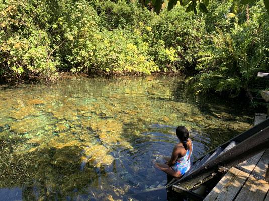 Laguna Guama, Ojos Indigenas, Punta Cana, RD, DR, Dom Rep, Dominikanische Republik