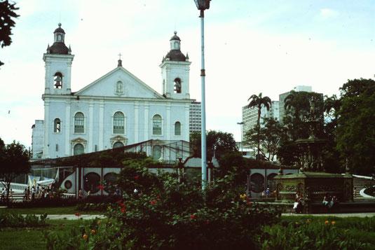 Brasil, Brasilien, Manaus, Theater, Kirchen, igreja Matriz, Zentrum, Skyline, Metropolitankathedrale Unserer Lieben Frau von der Empfängnis