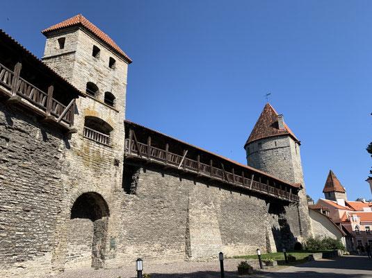 Estland, Tallinn, Reval, Altstadt, Stadtmauer, Türme