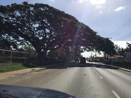 Hauptstraße ins Zentrum von Nuku´alofa