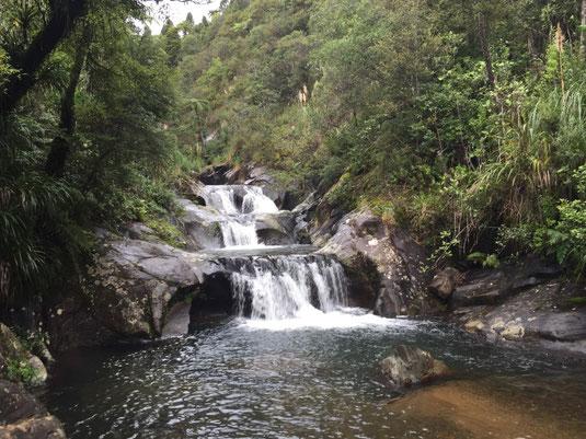 Cathedral Cove, Whitianga, Coromandel, Water gardens, Wasserfall