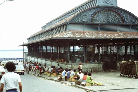 Brasil, Brasilien, Manaus, Hafen, Zentrum, Markt, Markthallen