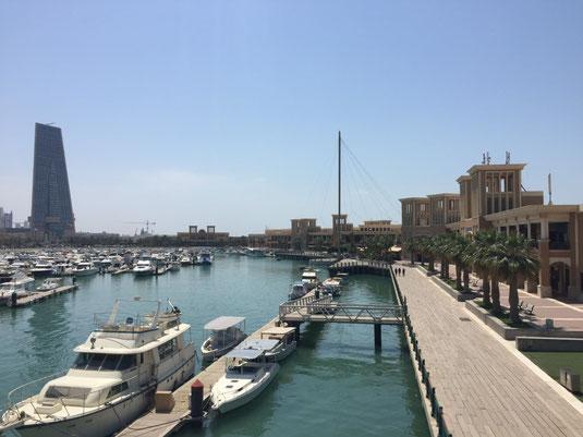 Kuwait, Fish Market, Fisch Markt, Golf Road, Reisebericht, Reiseblog, Sehenswürdigkeiten, Attraktion, Souq Shark
