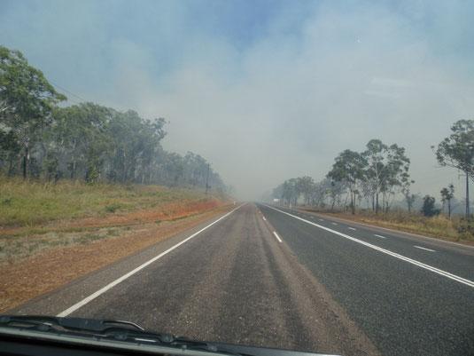 Australien, Northern Territory, Darwin, Feuer, Buschbrand