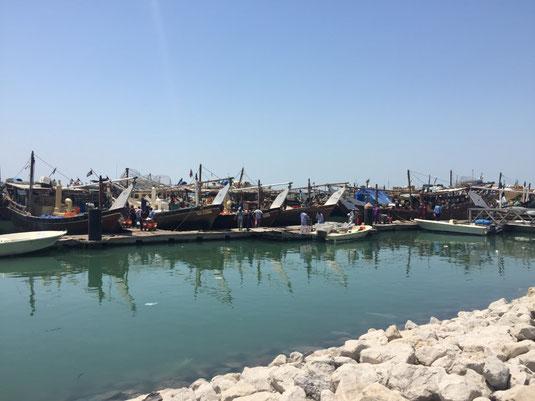 Kuwait, Fish Market, Fisch Markt, Golf Road, Reisebericht, Reiseblog, Sehenswürdigkeiten, Attraktion
