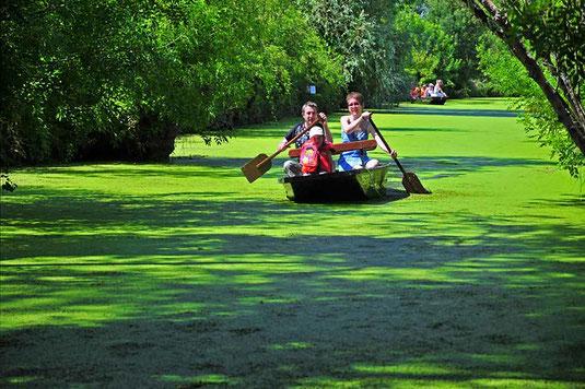 Découvrez le Marais Poitevin avec le réseau de gîtes et chambres d'hôtes Sud-Vendée Vacances