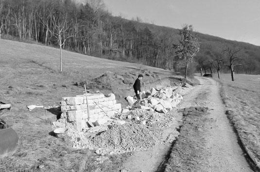 Lebensraumaufwertung mit Trockenmauer in Löhningen (Foto: A. Reich)