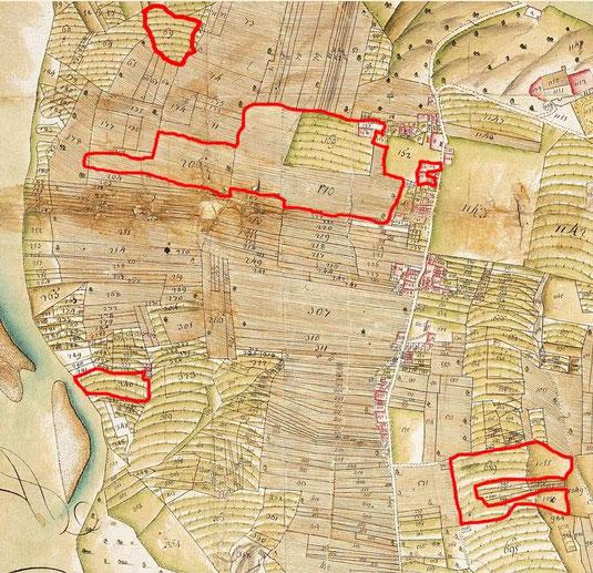 Extrait de la mappe sarde de 1728-1738, en rouge une partie de la propriété de Châteaufort