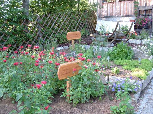 Riechen und Staunen über die Kräutervielfalt, @Heilkräutergarten