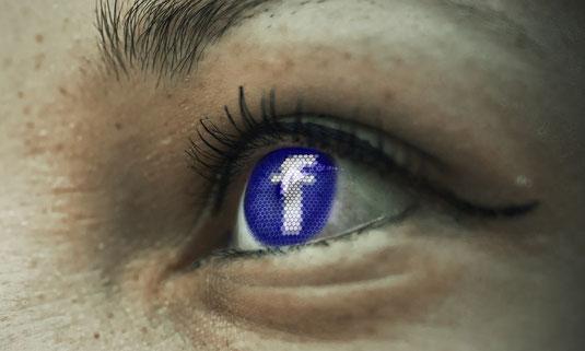 "Aktueller Datenschutz in Deutschland / Datenschutzgrundverordnung & Datenschutzrecht in Unternehmen / LfDI bei Pulse of Europe Mainz: ""Datenschutz: EU vs. Facebook & Co. – David gegen Goliath?"""