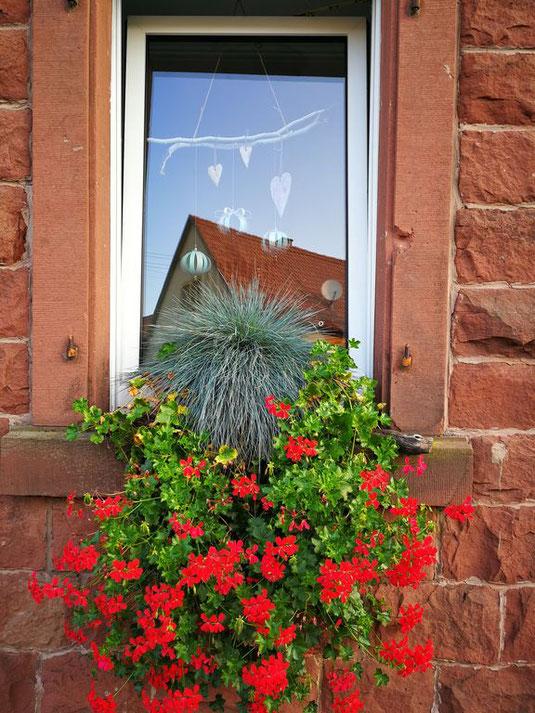 Fensterdekoration